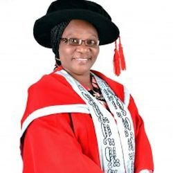 Prof. (Mrs) B. O. Adegbehingbe - Dean, Faculty of Clinical Sciences