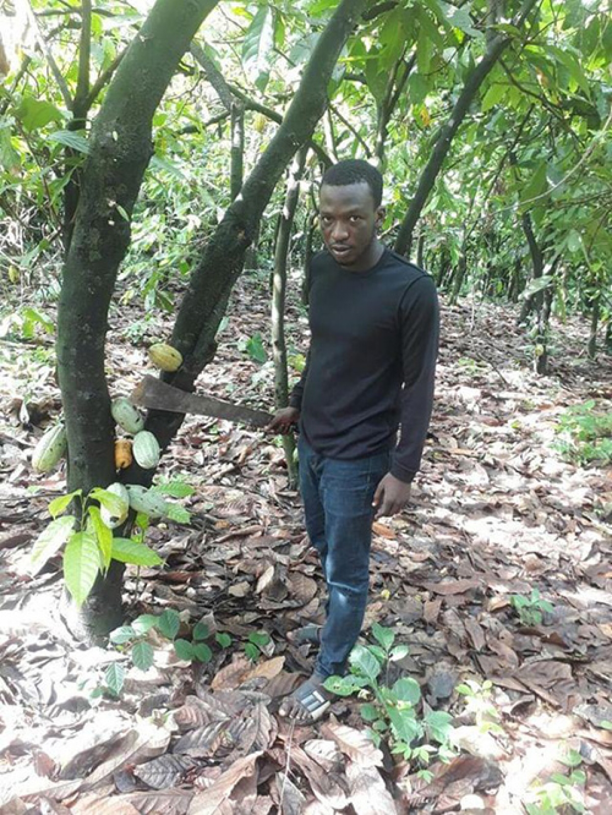 OAU Undergraduate Receives Commendation on Agri-preneurship